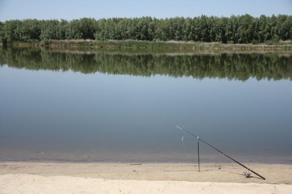 рыбалка в волгоградской обл дикарем
