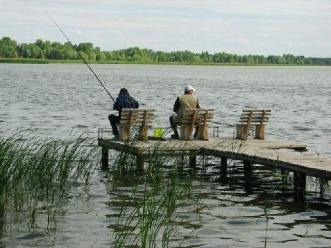 как построить пруд на даче своими руками для рыбалки