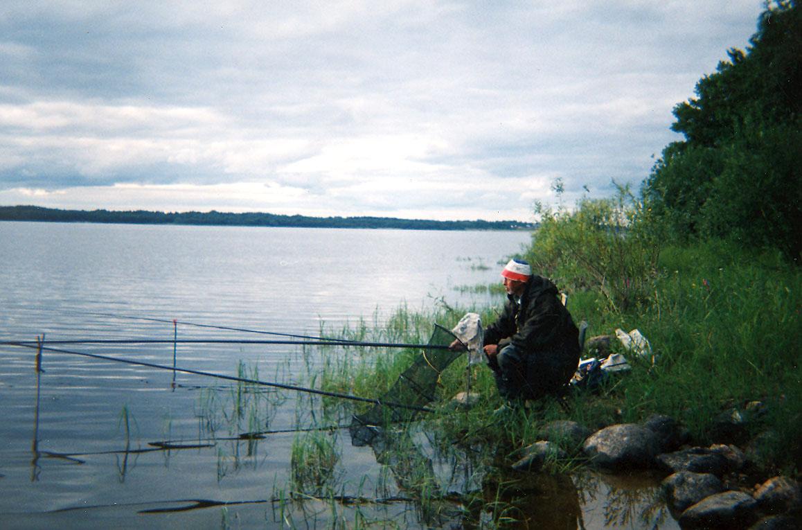 базы рыболовные на селигере все
