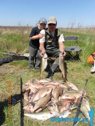как ловить рыбу на ахтубе